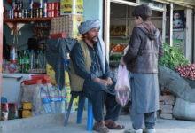 استرالیا فیلم «وقت چیغ انار» گراناز موسوی را به اسکار فرستاد