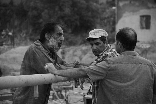 «دشت خاموش» در جشنواره بوگوتا به نمایش درمیآید